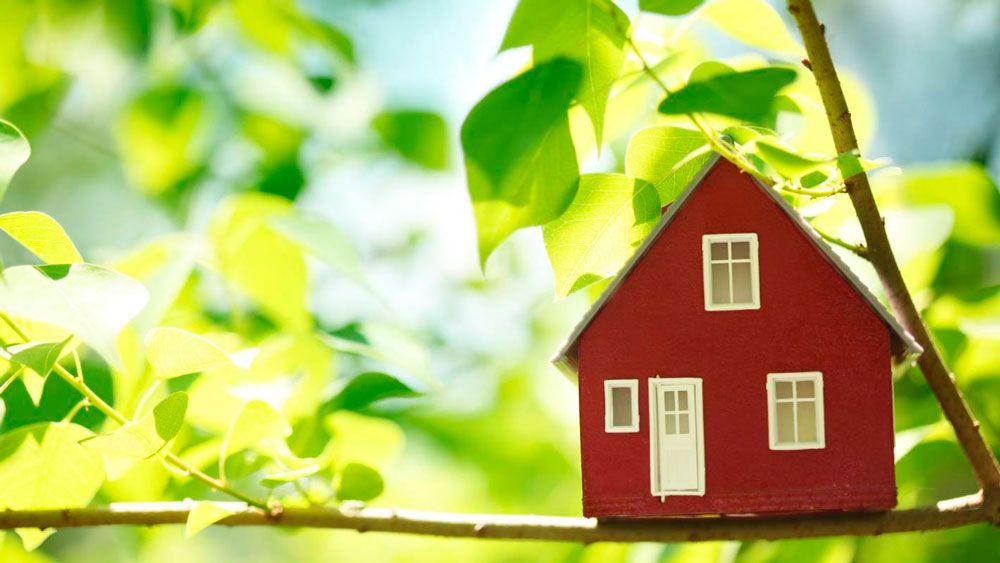 ипотека на земельный участок в снт